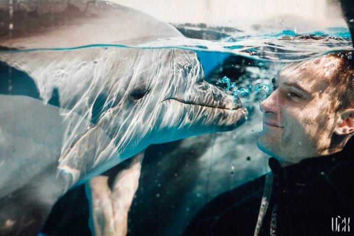 Delfinai Fotosesija Klaipeda Dolphins 001