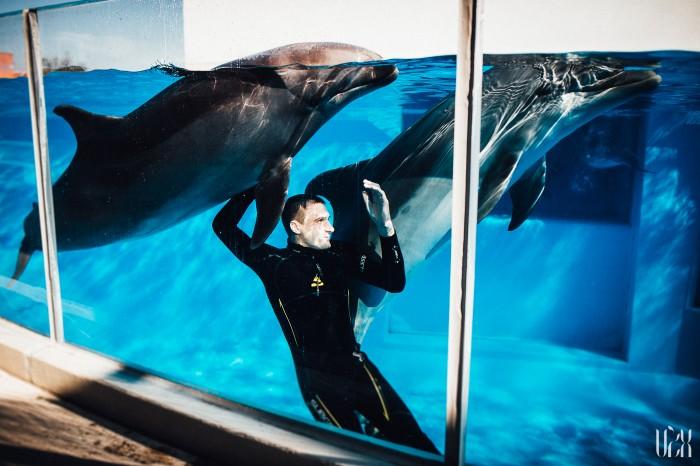 Delfinai Fotosesija Klaipeda Dolphins 004