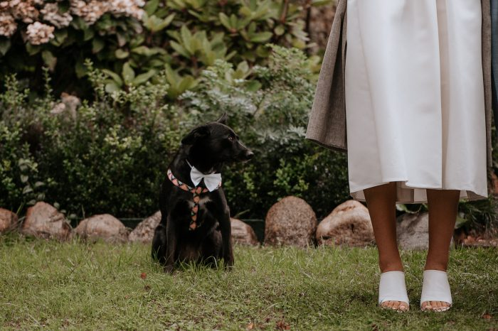 Sabaliauskaite Foto Vestuviu Fotosesija Nida Wedding 082