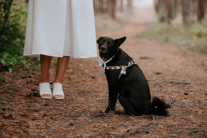 Sabaliauskaite Foto Vestuviu Fotosesija Nida Wedding 083