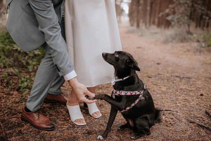 Sabaliauskaite Foto Vestuviu Fotosesija Nida Wedding 086